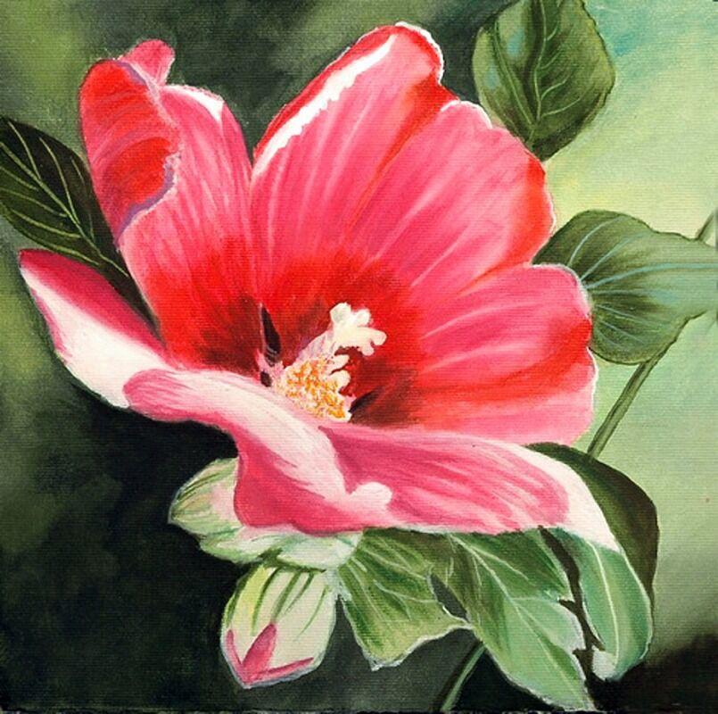 floral series  10