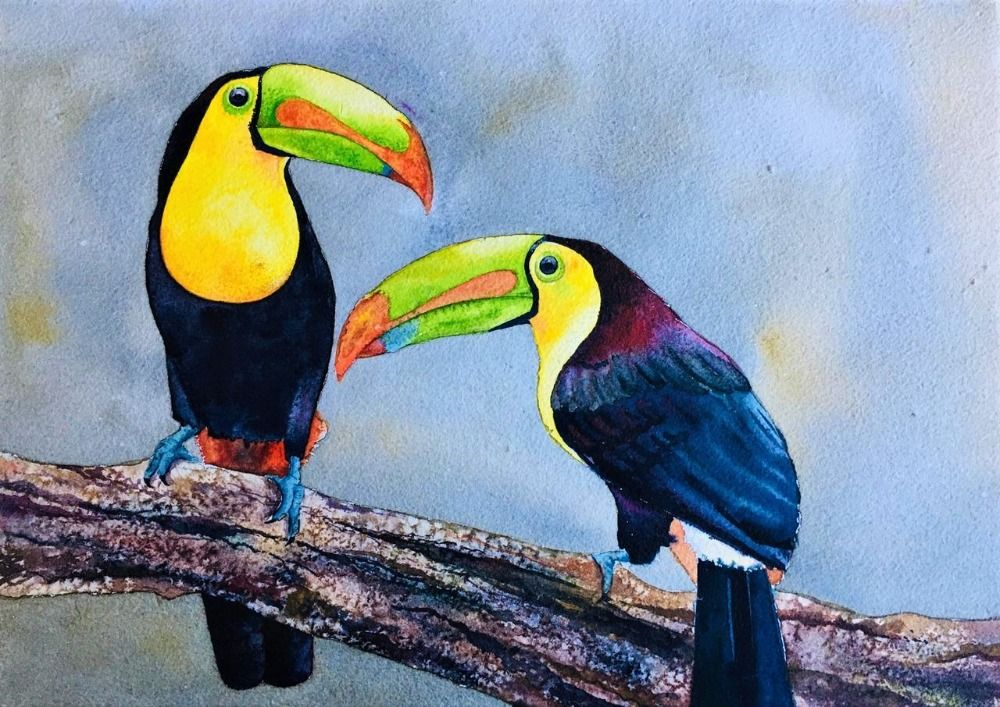 Bird Series 8
