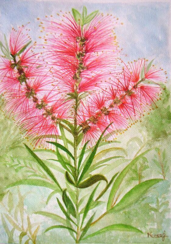 floral series 05