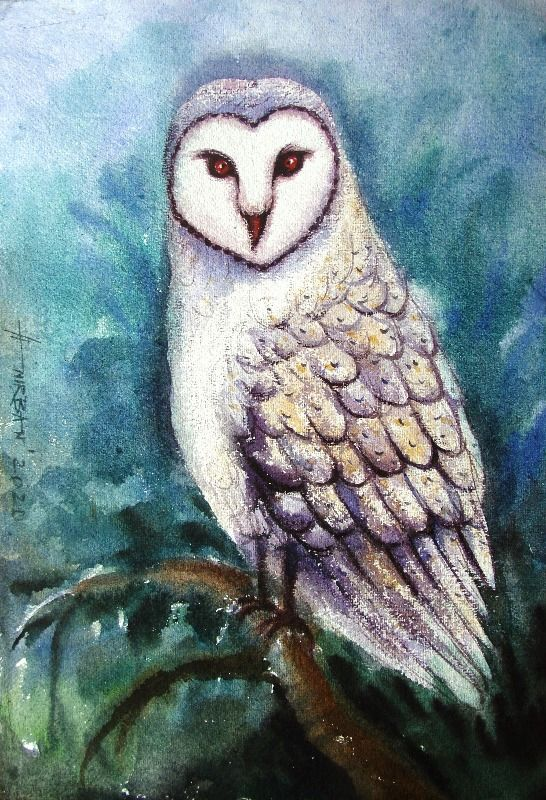 Wish Owl  - I