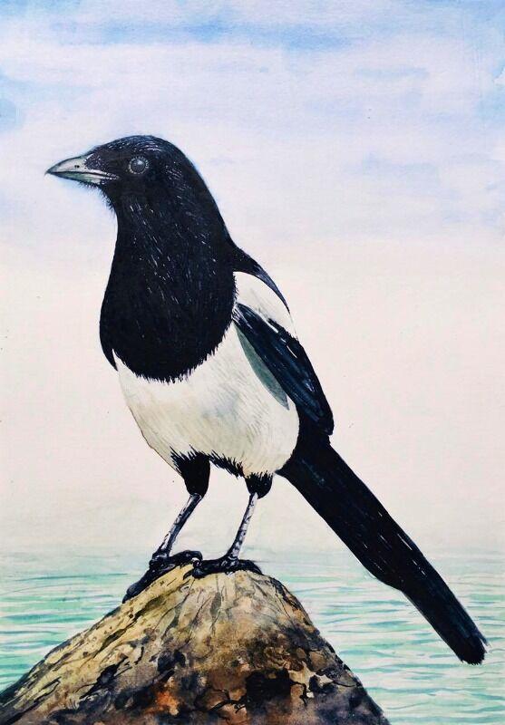 Bird Series 6