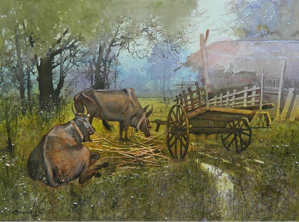bull cart 001