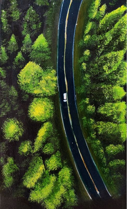 Top view of road in forest
