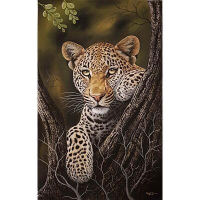 Leopard0011