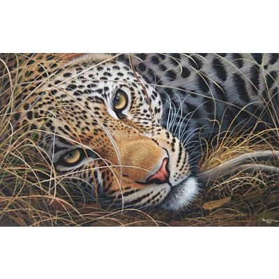 Leopard0012