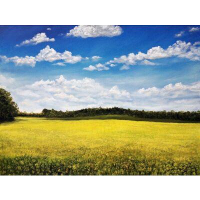 P241_Mustard Yellow
