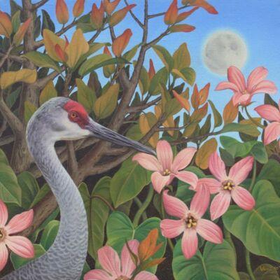Sandhil Crane