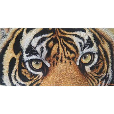 Tiger0013