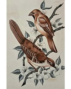 Stunning bird art painting will suitably fit your living room!