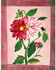 floral series  11
