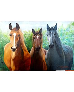 3 Stunning Horses painting will suitably fit your living room!!