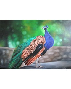 peacock art,realistic art,unrevealed beauty in Portrait painting best suitable for living room