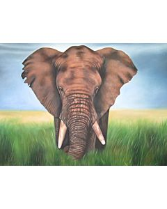 realist art,elephant painting,Beautiful painting for your living room that generates sweet emotions
