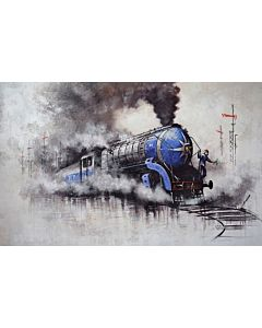 Nostalgia of Steam Locomotives_47
