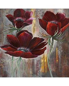 Red Velvet Poppies