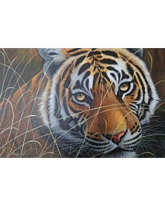 wild animal painting,realistic painting,100% Original, Hand Painted realistic Art paintings for your Living room or bed room wall